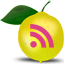 Expand2Web RSS Feed