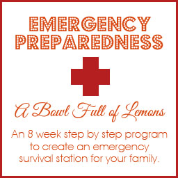 Emergency preparedness week 3 first aid kit a bowl full of lemons the fandeluxe Images