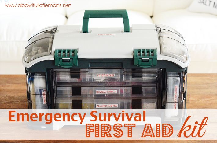 "Emergency Preparedness – Week 3 ""First Aid Kit"""