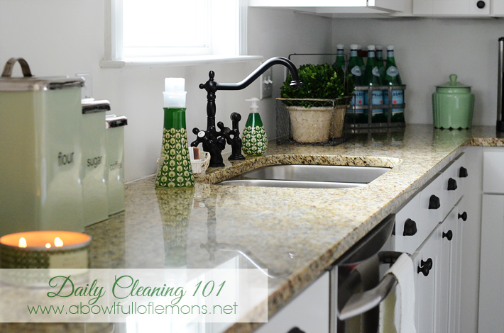 "Daily Cleaning 101 – Step 1 ""The Kitchen"""