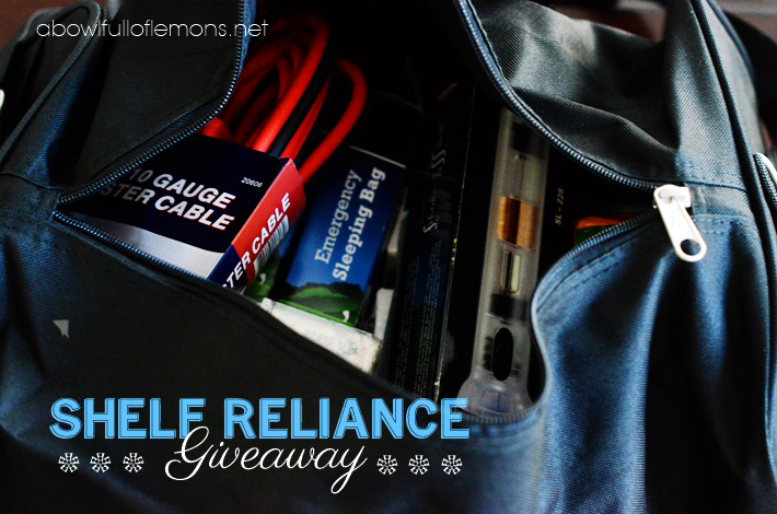 Shelf reliance giveaway 3