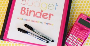 Budget Binder:  Household Budgeting Planner - A Bowl Full of Lemons