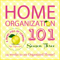 Home Organization 101 Season 3 BUTTON