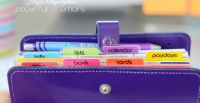 Filofax-Organization-A-Bowl-Full-of-Lemons-13