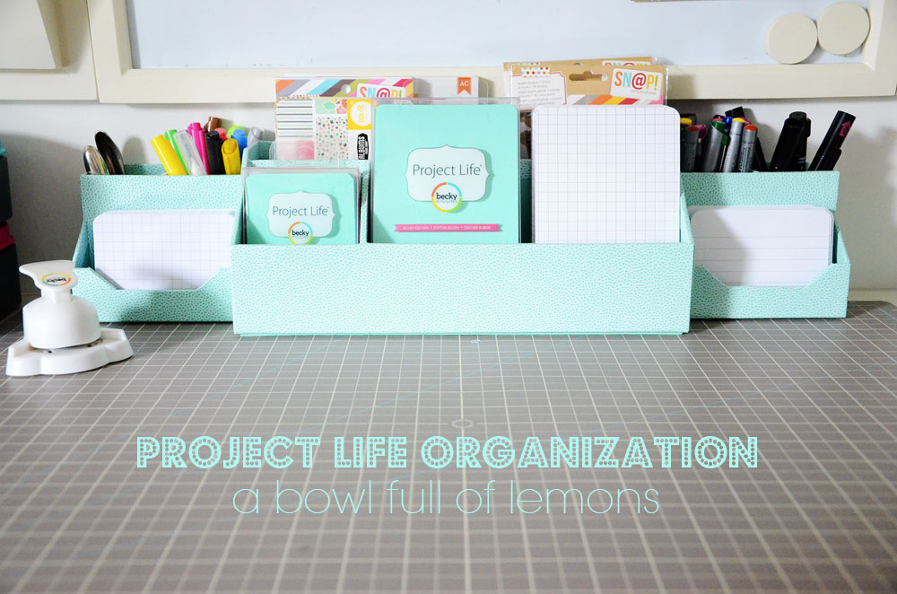 ABFOL Project Life Organization 1