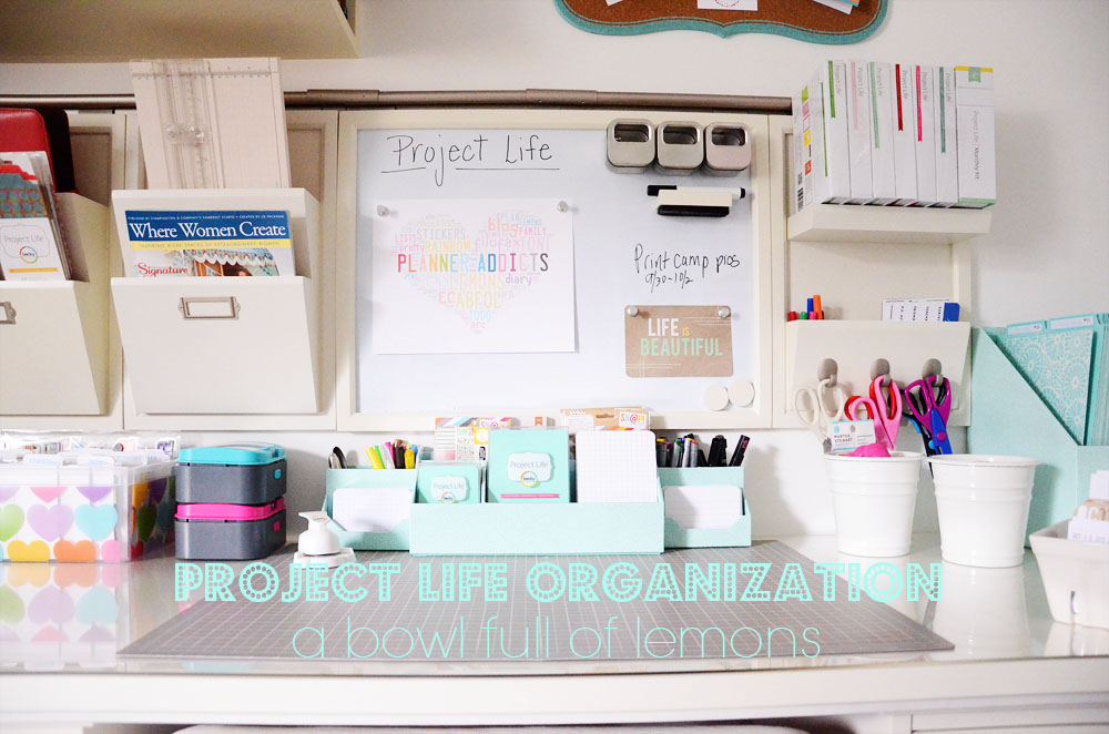 ABFOL Project Life Organization 3