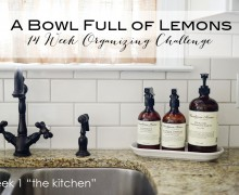 A Bowl Full of Lemons 14 Week Organizing Challenge Week 1 The Kitchen