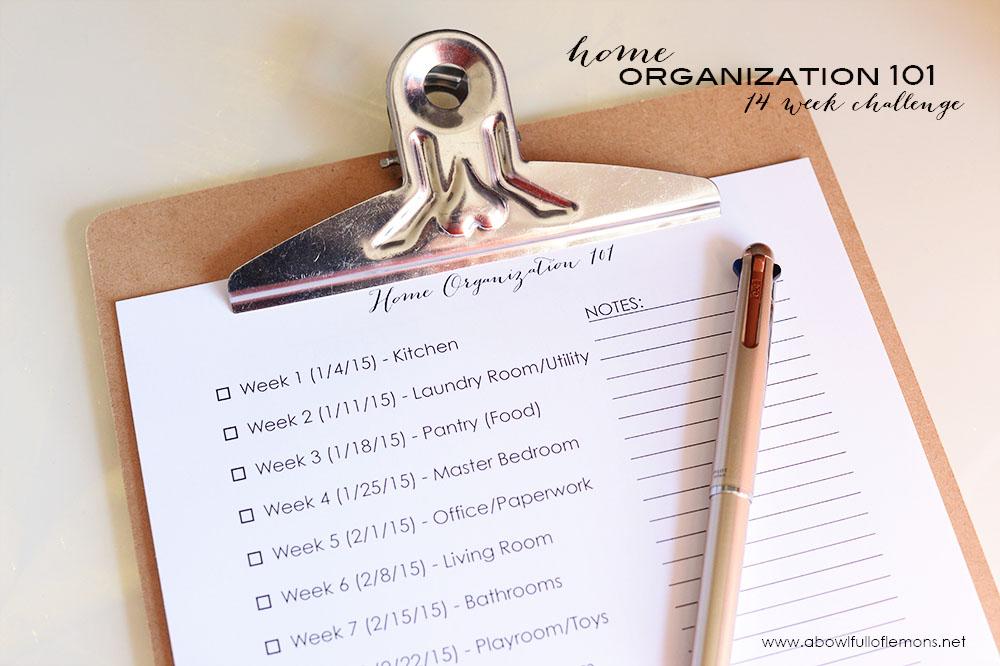 2015 Home Organizing Challenge | A Bowl Full of Lemons