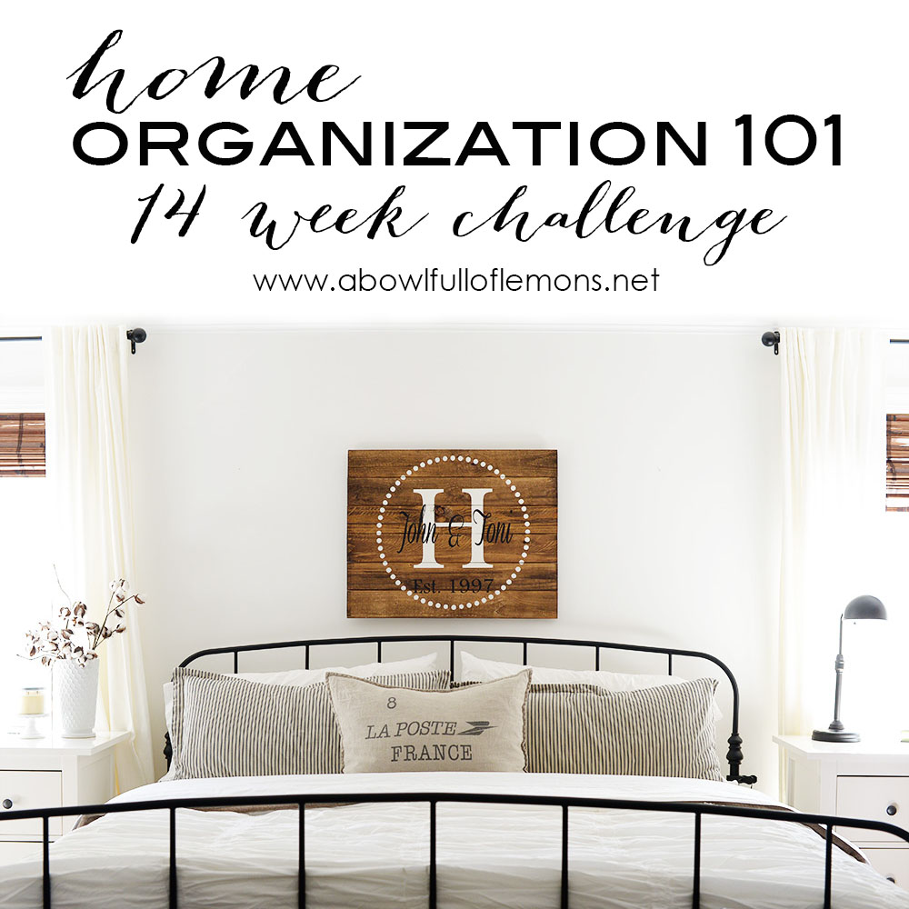 2015 Home Organizing Challenge
