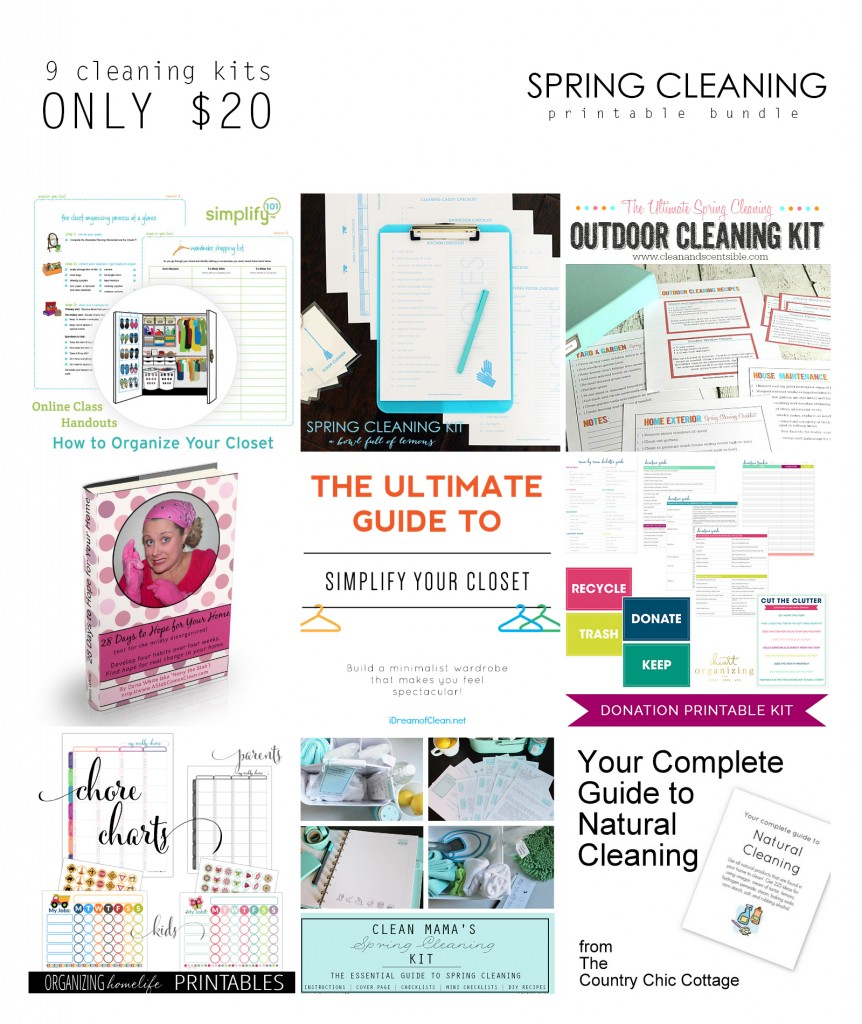 2015 Spring Cleaning Bundle