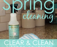 Spring Clean in 30 Challenge:  Day 14 Clear & clean kitchen counters via A Bowl Full of Lemons