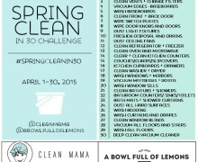Spring Clean in 30 Challenge