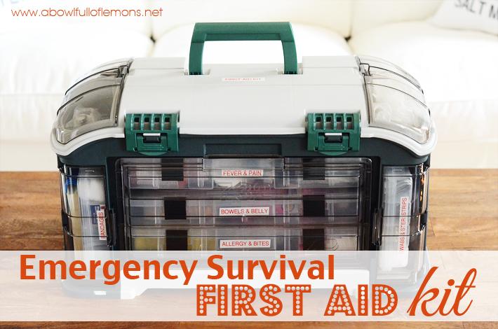 Emergency Preparedness Survival Station     Mylifemadeeasy