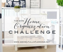 The 2016 Home Organization Challenge