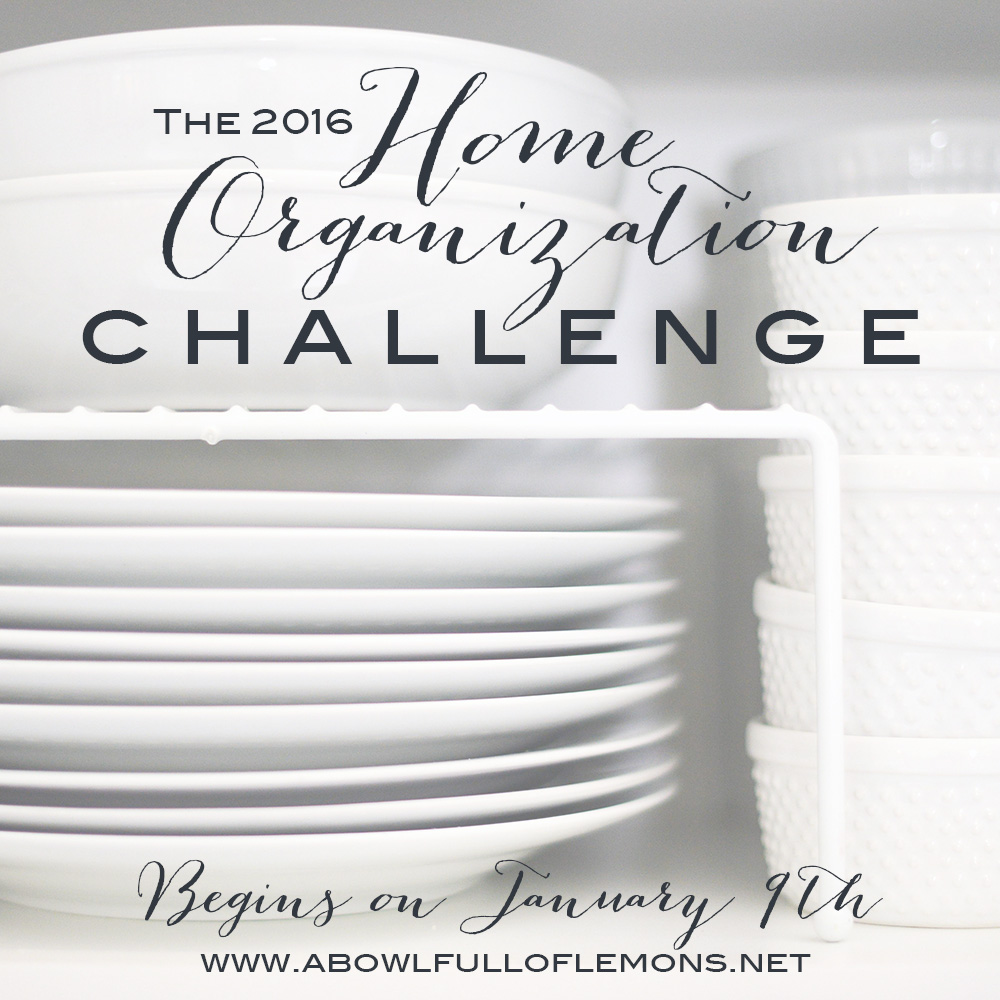 The 2016 Home Organization Challenge Instagram