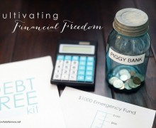 Cultivating Financial Freedom by A Bowl Full of Lemons