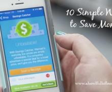 10 Simple Ways to Save Money via A Bowl Full of Lemons