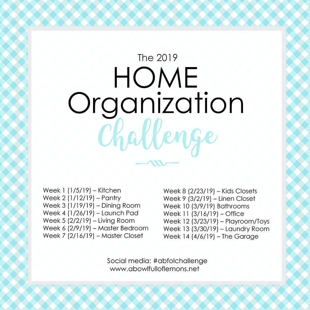 2019 Home Organization Challenge Kit