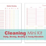 Cleaning-Mini-Kit