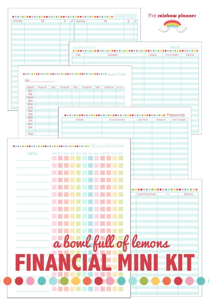 A Bowl Full of Lemons Financial Mini Kit