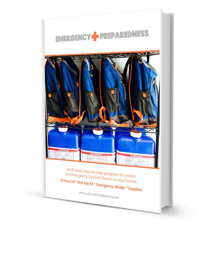 Emergency Preparedness Ebook via A Bowl Full of Lemons